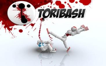 игра Toribash